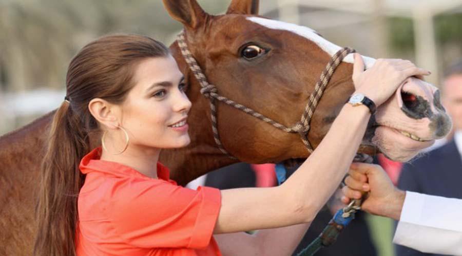 Horse Riding in UAE